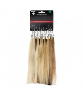 Balmain Colorring HairExpression