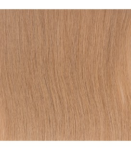 Balmain Backstage Weft Human Hair 40cm 1pcs 9A