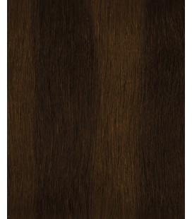 HairXpression 50cm 25pcs 2-4