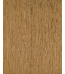HairXpression 50cm 25pcs 22