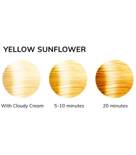 Lisaplex™ Pastel Color Yellow Sunflower