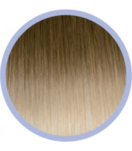 Ombre Line  10-20 Donkerblond-Lichtblond  50-55cm