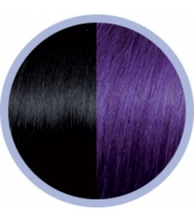Seiseta Crazy  1B-63 Zwart-Violet  50-55cm