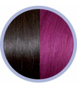 Seiseta Crazy  4-62 Donkerkastanjebruin-Roodviolet  50-55cm