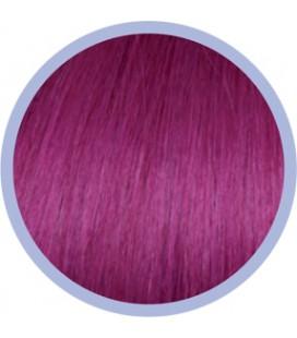 Flat Ring-On Crazy Line  Red Violet .  50-55cm