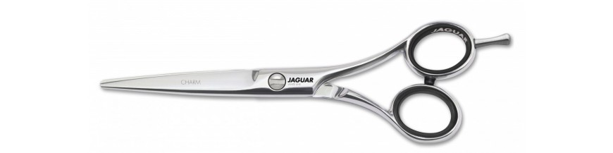 Jaguar Charm